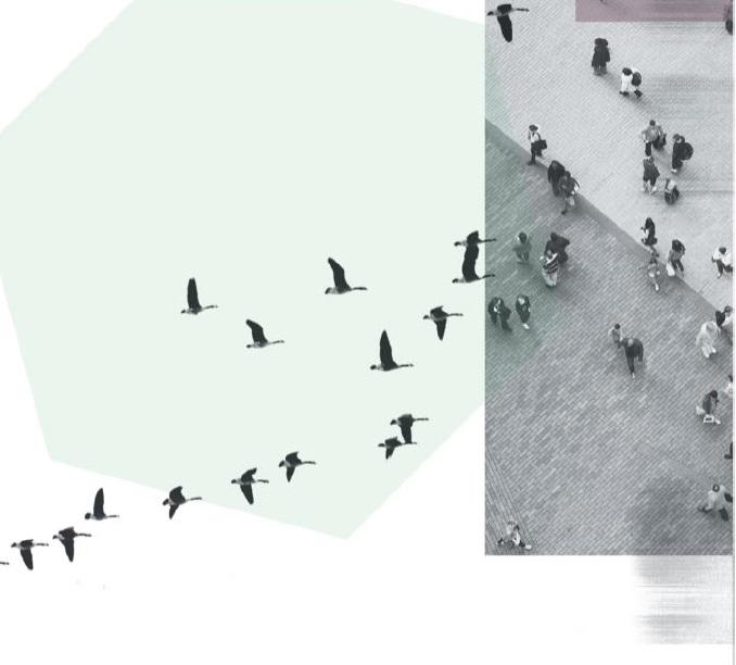 Construcción de ciudadadnía e identidad a través de la movilización social. Una mirada desde América Latina