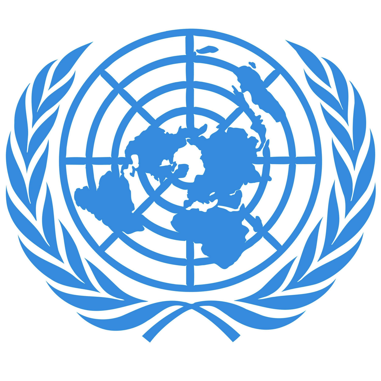 L'ONU: 70 ans de gouvernance mondiale