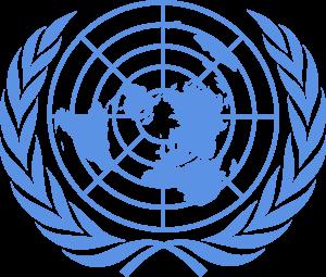 L'ONU: Les défis de demain