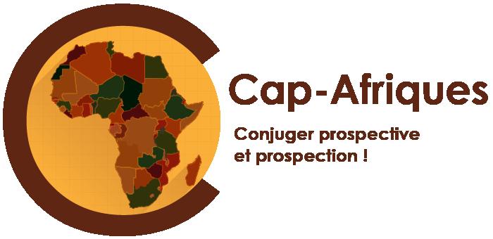 Observatoire sur les Afriques (CAP-Afriques)